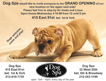 Upper East Side Dog Spa