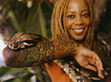debra wilson flash