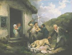 morland dogs